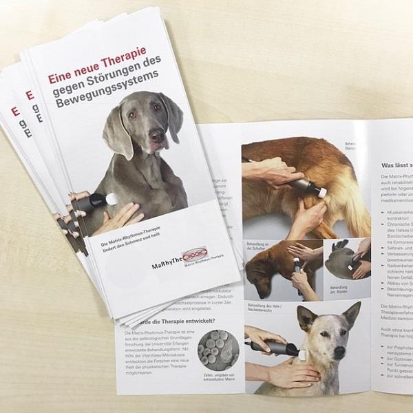 MaRhyThe Infoflyer für Kleintierbesitzer